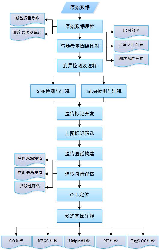 遗传连锁图谱_流程/工具详情 — 美吉生物云